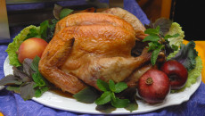 Igrids Thanksgiving Turkey.  SC