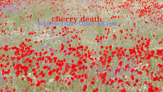 Cherry Death review - provided