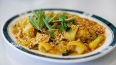 1--curry-8706gf
